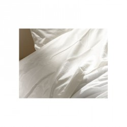 Drap plat jetable traité non feu SOFT TOUCH (lot de 75)